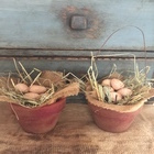 Cranberry Egg Pot