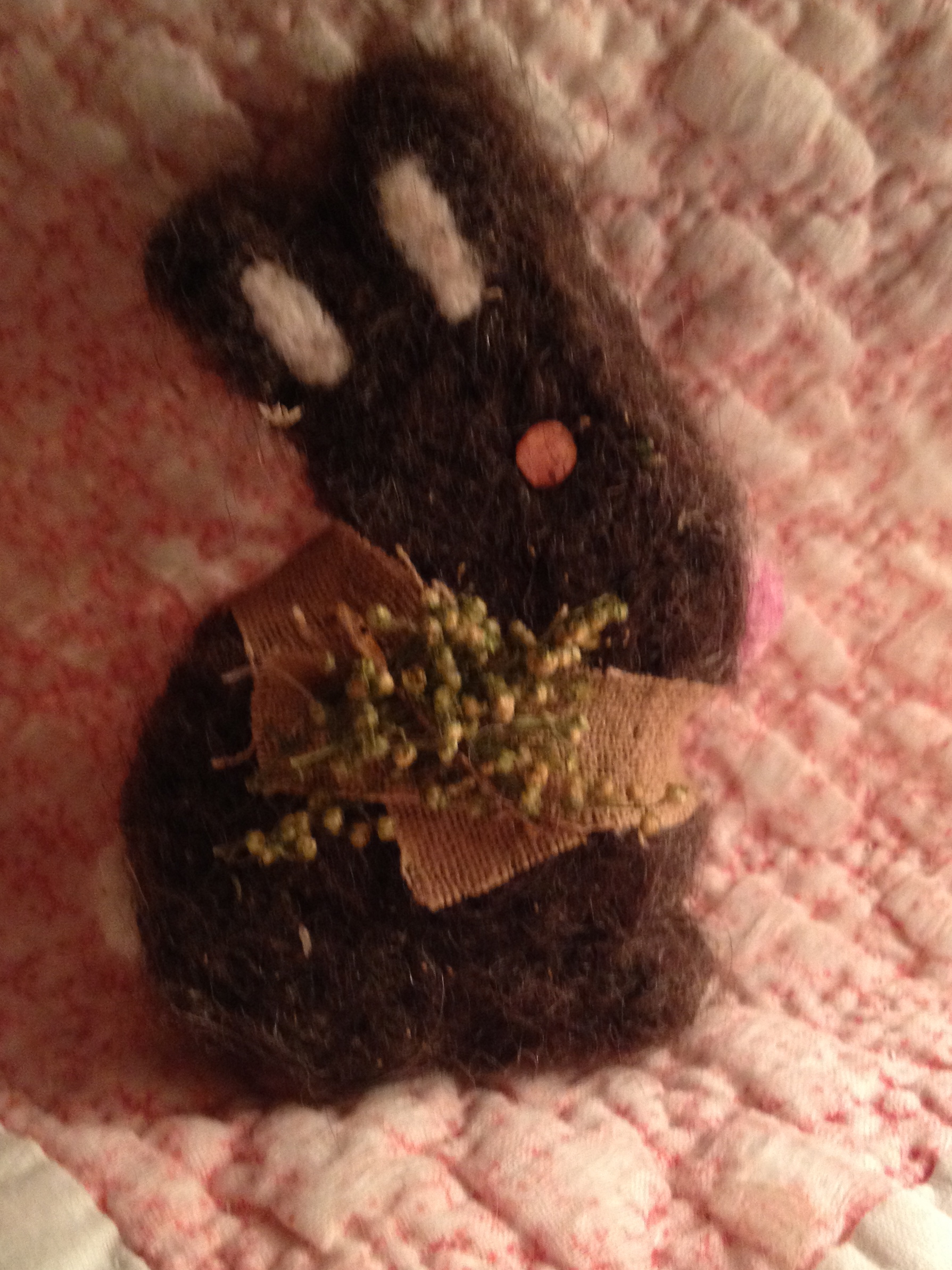 Felted Bunny (Brown)